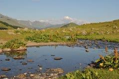 A Abkhásia As montanhas caucasianos Fotografia de Stock Royalty Free