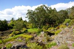 Abkhazi trädgårdar, Victoria Fotografering för Bildbyråer