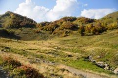 abkhazia berg Arkivfoto
