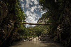 Abkhazia.Canyon stock image
