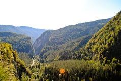 Abkhazian φύση Στοκ φωτογραφία με δικαίωμα ελεύθερης χρήσης