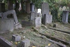 Abney Park Cemetery Royalty Free Stock Photos