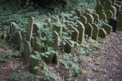 Abney Park Cemetery Royalty Free Stock Images