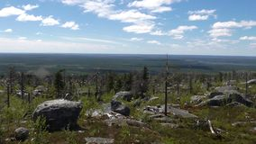 Vottovaara Karelia. Abnormal mountain in Karelia, ugly trees, mystical landscapes. There are more than one and a half thousand stone sades. The sinister secret royalty free stock photos
