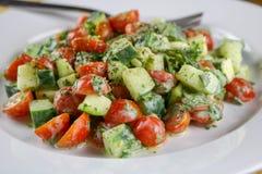 Abobrinha, pepino, tomate & Herb Salad com um molho cremoso do vinagrete foto de stock royalty free