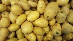 Abondance de caisse de pommes de terre jaunes Images libres de droits