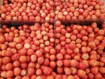 Abondance de tomates juteuses mûres rouges Photos libres de droits