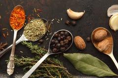 Abondance des herbes et des épices sur la table foncée Image stock