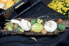 Abondance végétale Photographie stock