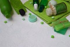 Abone la composición de la menta con cal de los productos del threatment de la belleza en colores verdes en un fondo concreto bla Fotos de archivo libres de regalías