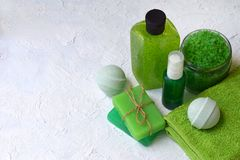 Abone los productos del tratamiento con cal de la belleza de la composición de la menta en colores verdes: champú, jabón, sal de  Fotografía de archivo