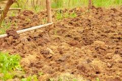 Abono de vacas en un campo agrícola, una pila de abono natural para fertilizar el suelo en el campo imagenes de archivo