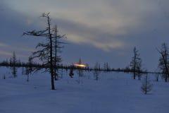 Aborigeno artico russo Fotografia Stock Libera da Diritti