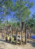 Aboriginal burial site Stock Photos