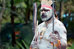 Aboriginal culture show in Queensland Australia. Portrait of one Yugambeh Aboriginal warrior man preform Aboriginal culture martial art during cultural show in stock images
