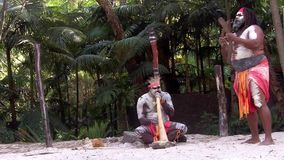Aboriginal culture show in Queensland Australia stock video