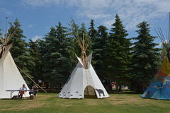 Aboriginal day live celebration In Winnipeg Royalty Free Stock Images