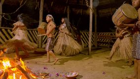 Tribe people dancing. Aboriginal fire dance and traditional culture performing in amazonian jungle by night in Ecuador stock video footage
