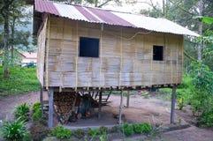 Orang Asli hus Fotografering för Bildbyråer