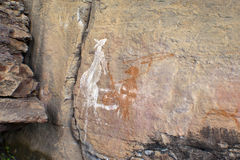 Aboriginal Rockkonst Arkivbilder