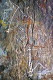 Aboriginal Rockkonst Royaltyfria Foton