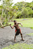 Australian Aboriginal throwing the speer stock photo