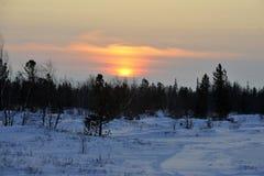 Aboriginals nordici La Russia Yamal Nadym Immagini Stock Libere da Diritti