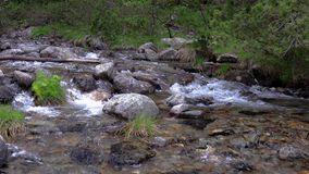 Abounding mountain creek from a Pyrenees mountain in Spain, slow motion footage