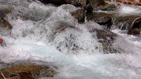 Abounding river detail with close up of rock, in Spanish Pyrenees mountains stock video footage