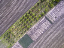 Above agricultural fields Stock Photography