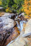 Above Chasm Falls in Rocky Mountain National Park. Hike above Chasm Falls in RMNP in the fall season with the aspen leaves turning gold Stock Photo