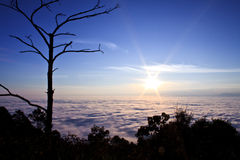 Above the cloud Royalty Free Stock Images
