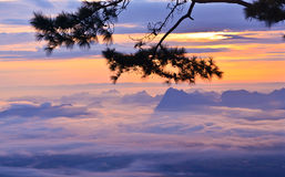 Above the cloud. Sunrise above the sea of mist Stock Images
