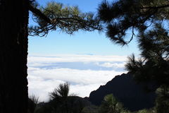 Above clouds. In Tenerife mountains Royalty Free Stock Photos