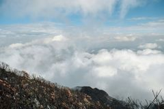 Above the clouds at Mount Meru, Tanzania. Above the clouds at Mount Meru, Arusha National Park, Tanzania royalty free stock image