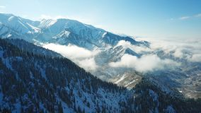 Above the clouds in the snowy mountains. Growing green spruce. Ate covered with snow. Clouds below us. Shooting with the drone. Blue skies. The snowy tops of royalty free stock photography