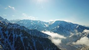 Above the clouds in the snowy mountains. Growing green spruce. Ate covered with snow. Clouds below us. Shooting with the drone. Blue skies. The snowy tops of stock photos