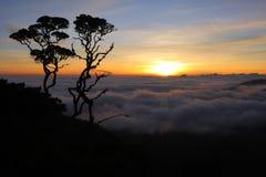 Above the clouds, sunrise / Landscape / Sumatra / Indonesia Stock Photography