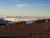 Above the clouds (Tenerife, Canary Island). Volcanic landscape - stone - sand - hills - bushes - blue sky - sunny day Stock Image