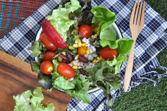 Above of Colorful Salad Bowl Royalty Free Stock Photo