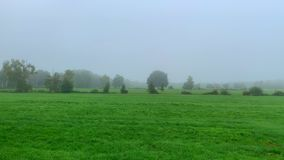 Above the fields, the fog drifts through the land, creating a mood of merriment