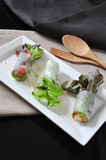 Above of Fresh Veggies Rolls on White Plate Royalty Free Stock Image