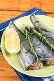 Above green plate with fresh hake fish and rosemary and lemon.  Royalty Free Stock Photography