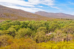 Above Hills Homestead - Wilpena Pound stock image