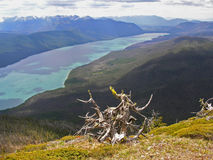 Above Lake McDonald Stock Images