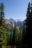 Above Moraine lake Royalty Free Stock Images