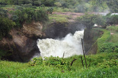 Above Murchison Falls in Uganda Stock Image