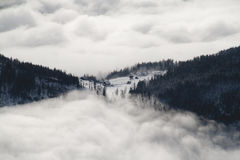 Above a sea of fog Royalty Free Stock Image