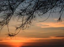 above sea sunset Στοκ Εικόνες