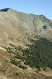 Above the Tree Line - Colorado Royalty Free Stock Image